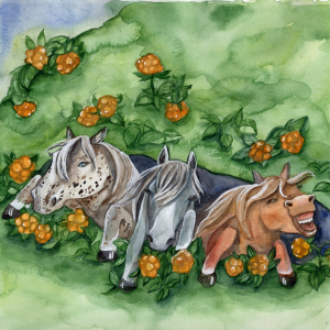 Hästar under sten - samarbete med en författare